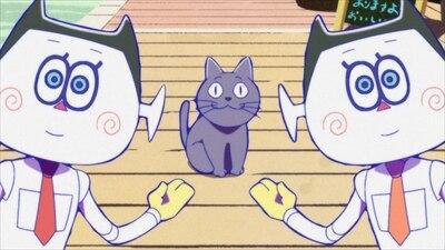 6話 猫期待値の結果